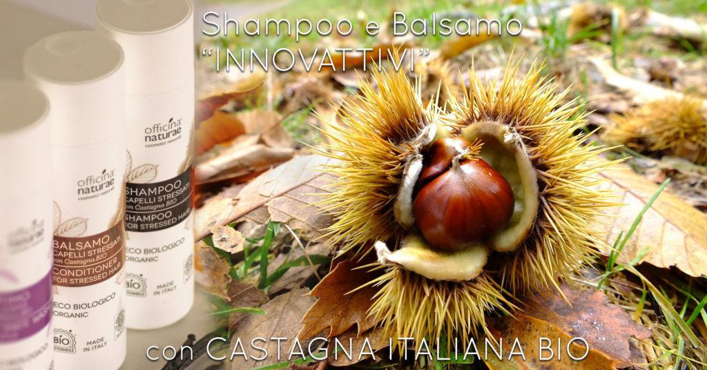 Shampoo e Balsamo alla Castagna Bio